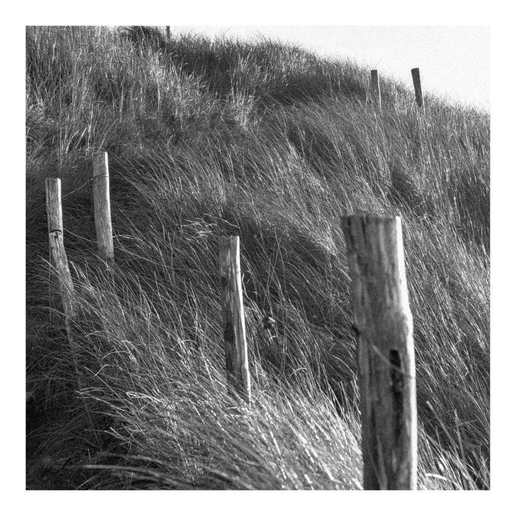 Abords d'une plage en Bretagne / Finistère