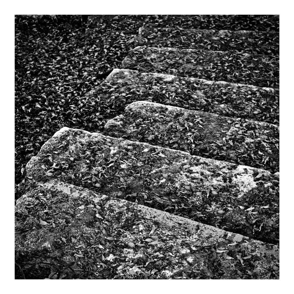 Escaliers graphiques